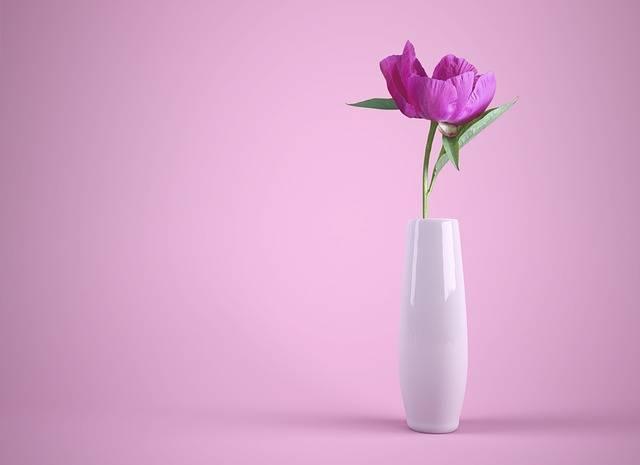 Flower Vase Colorful · Free photo on Pixabay (22433)