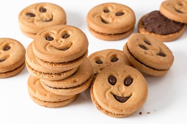 Cookie Biscuit Round · Free photo on Pixabay (23233)