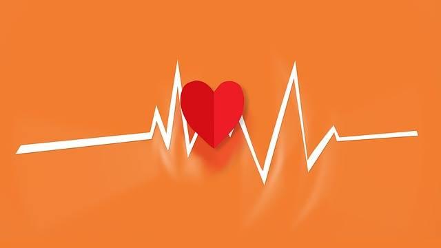 Heart Beat · Free photo on Pixabay (29502)