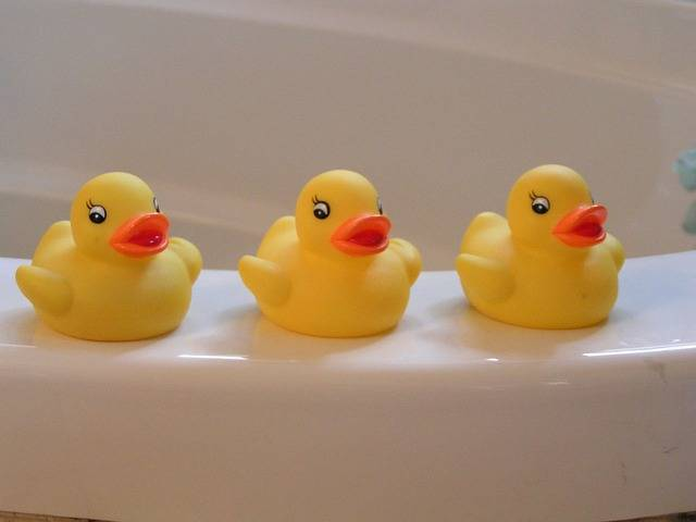 Rubber Duckies Yellow Ducky · Free photo on Pixabay (31216)