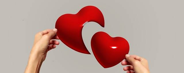 Hands Heart Separation · Free photo on Pixabay (40075)