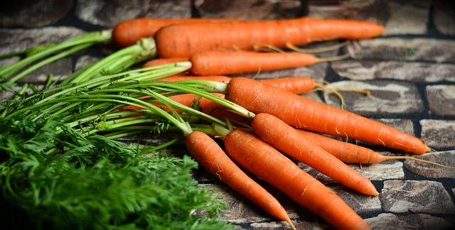 Carrots Vegetables Harvest · Free photo on Pixabay (45808)