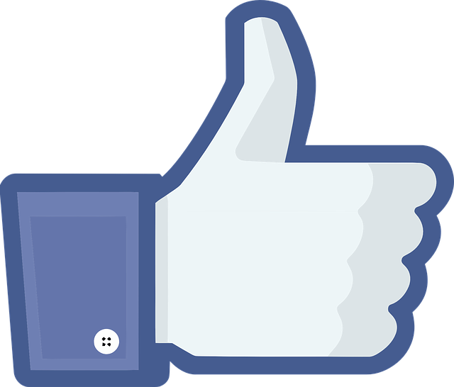 Face Book Praise · Free vector graphic on Pixabay (48489)