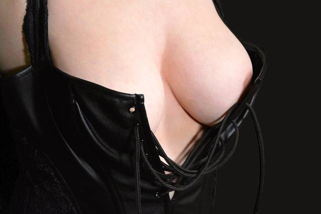 Breasts Female Bustier · Free photo on Pixabay (48974)