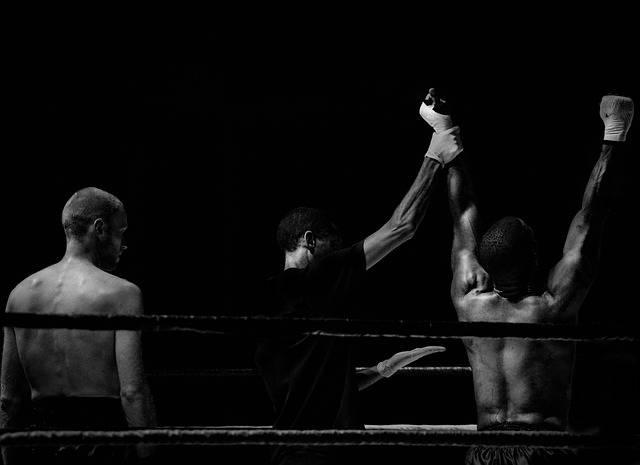 Boxing Winner Looser · Free photo on Pixabay (50342)