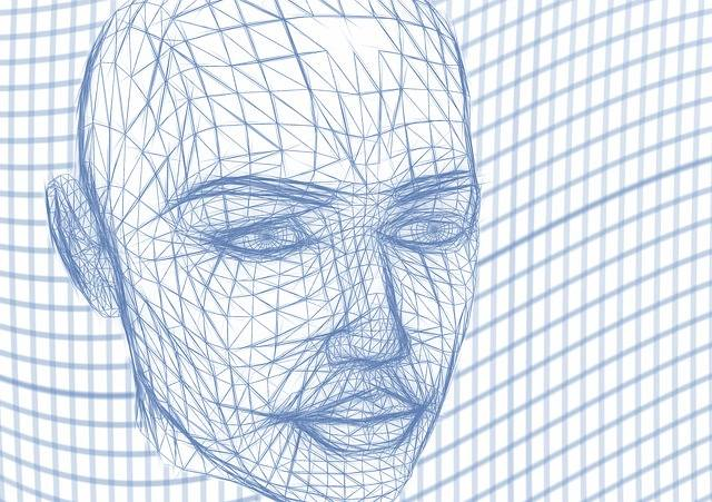 Head Wireframe Face · Free image on Pixabay (50468)