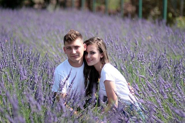 Couple Lavender Love · Free photo on Pixabay (54050)