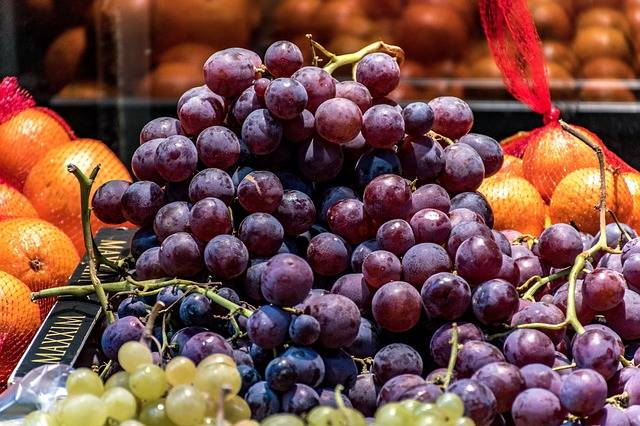 Red Grapes Oranges Green · Free photo on Pixabay (64531)