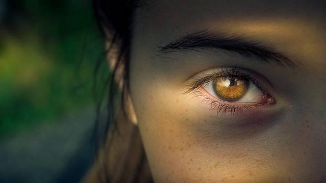Eye Iris Pupil · Free photo on Pixabay (72598)