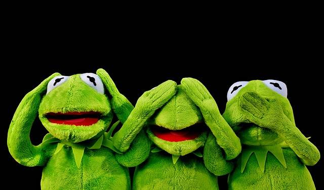 Not Hear Kermit See Do - Free photo on Pixabay (81955)