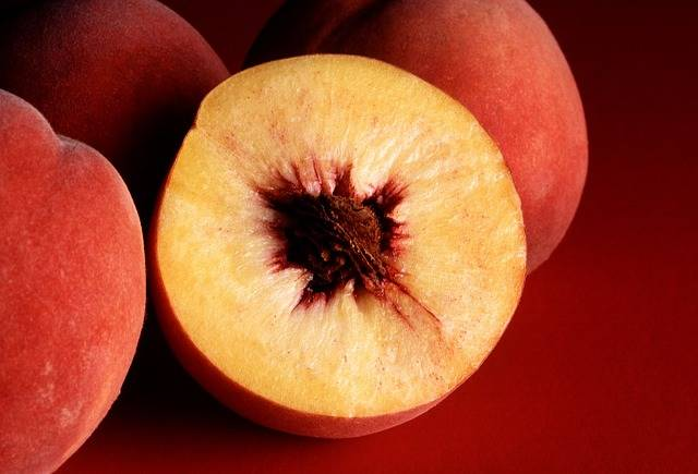 Autumn Red Peaches Sliced Whole - Free photo on Pixabay (110832)