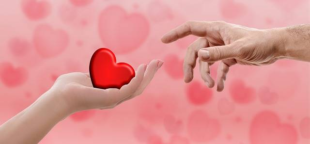 Heart Valentine'S Day Hand - Free photo on Pixabay (115825)