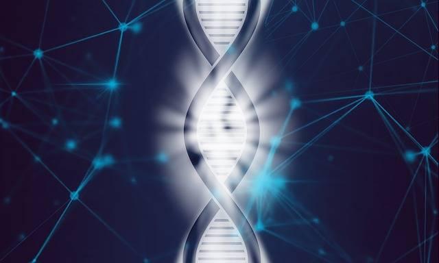 Dna Life Biotechnology - Free image on Pixabay (126504)