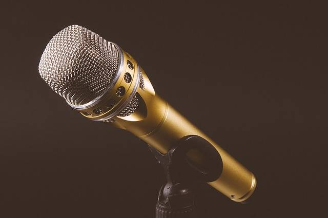Microphone Mic Mike - Free photo on Pixabay (128398)