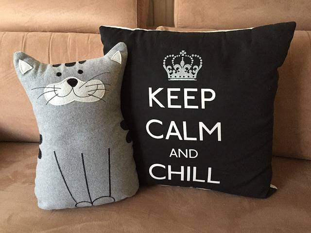 Pillow Relax Chill Keep - Free photo on Pixabay (137411)