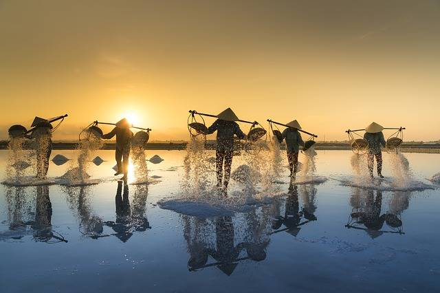Salt Harvesting Vietnam Water - Free photo on Pixabay (137983)