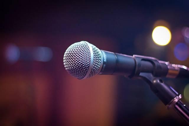 Microphone Sound - Free photo on Pixabay (143848)