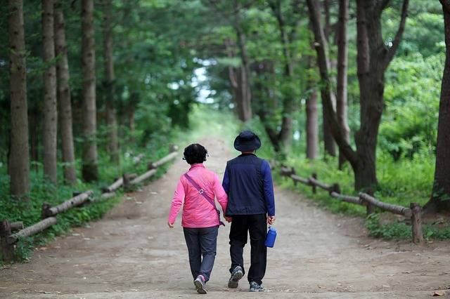 Elderly Couple 다정히 Hand - Free photo on Pixabay (144069)