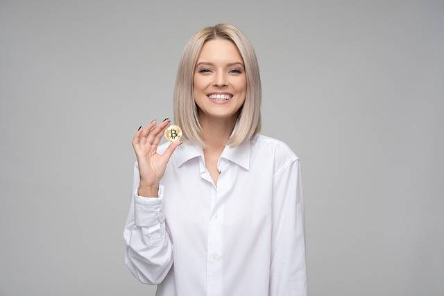 Cryptocurrency Bitcoin Finance - Free photo on Pixabay (146889)