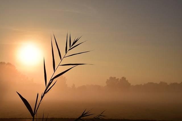 Sunrise Red Morgenrot - Free photo on Pixabay (149318)