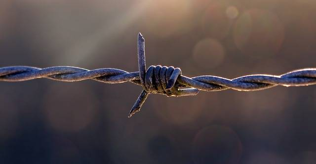 Pasture Fence Barbed Wire Fencing - Free photo on Pixabay (152490)