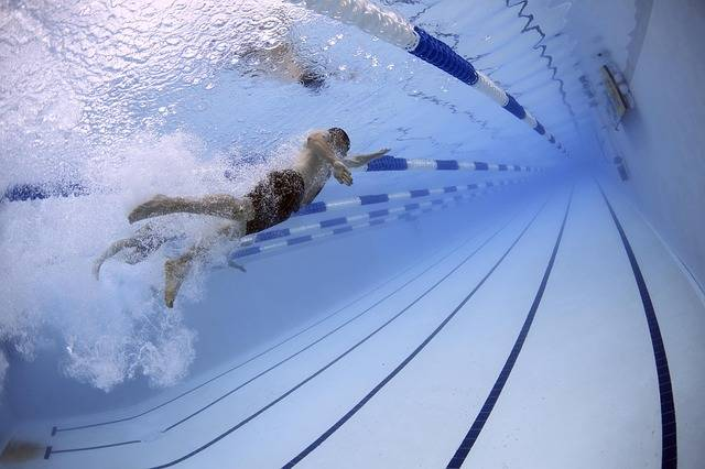Swimmers Swimming Race - Free photo on Pixabay (152555)
