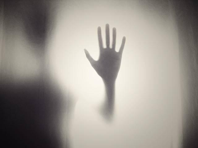 Hand Silhouette Shape - Free photo on Pixabay (153440)