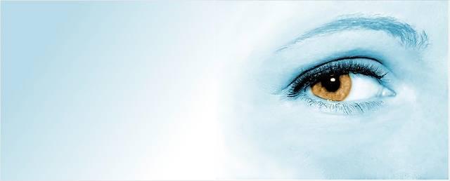 Eye Woman Face - Free photo on Pixabay (155468)