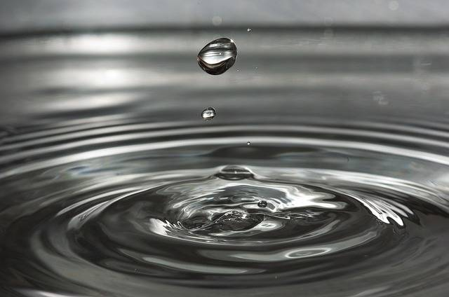 Drip Drop Of Water Wave - Free photo on Pixabay (156380)