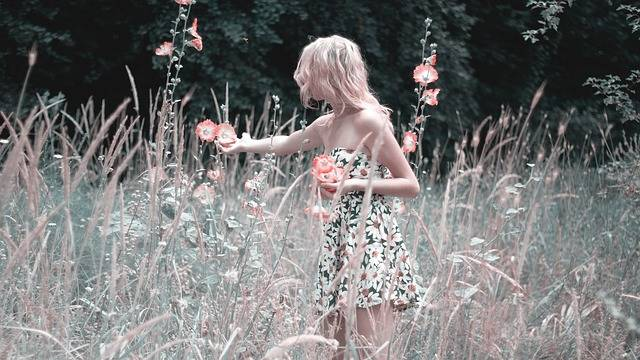 Girl Collects Flowers Nature - Free photo on Pixabay (158566)