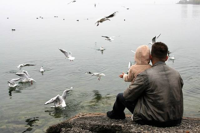 The Father Of Child Love Lake - Free photo on Pixabay (172314)