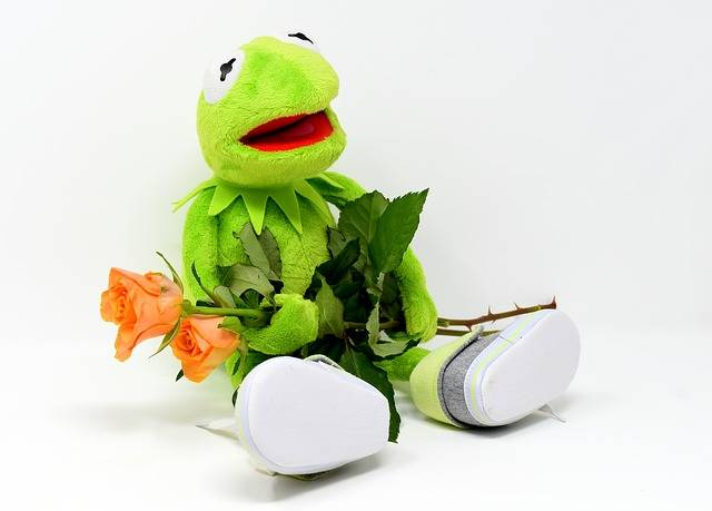 Kermit Greetings Frog Get Well - Free photo on Pixabay (177233)