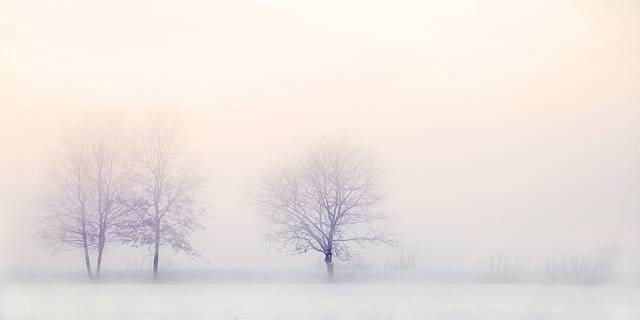 Winter Landscape Trees Snow - Free photo on Pixabay (195418)