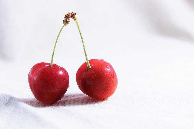 And Cherries Red Fruit - Free photo on Pixabay (203681)