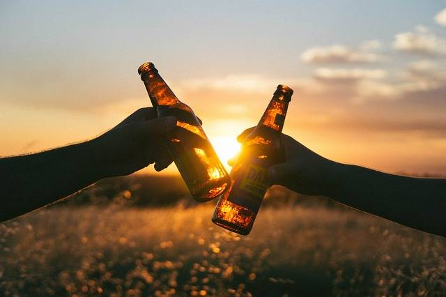 Cheers Beverage Drink Booze Root - Free photo on Pixabay (206091)