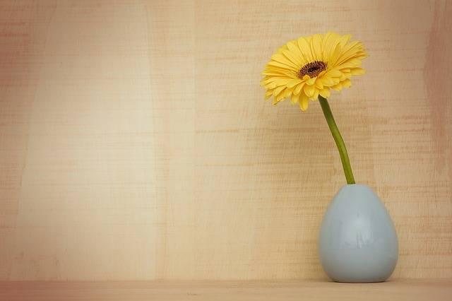 Gerbera Flower Decoration Flora - Free photo on Pixabay (210355)