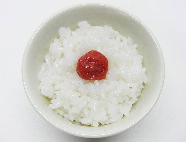 Rice Food Pickled - Free photo on Pixabay (218611)