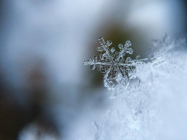 Snowflake Snow Crystal - Free photo on Pixabay (221895)