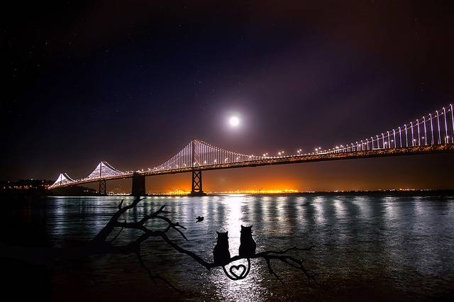 San Francisco Oakland Bay Bridge - Free photo on Pixabay (221911)