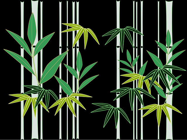 Bamboo Japan Japanese Style - Free vector graphic on Pixabay (221964)