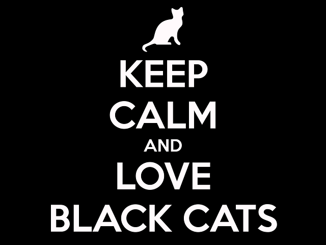 Cat Black Keep Calm - Free image on Pixabay (243239)
