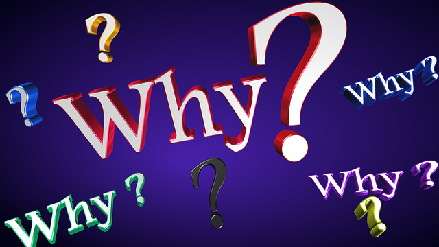 Why Text Question - Free image on Pixabay (246086)