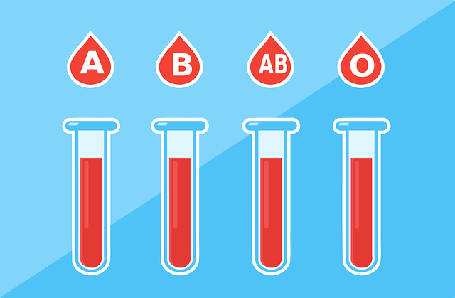 Blood Type Health - Free vector graphic on Pixabay (250375)