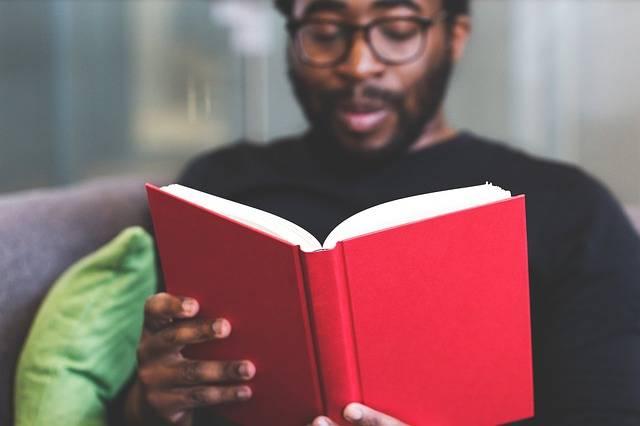 Guy Man Reading - Free photo on Pixabay (250703)