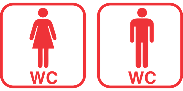 Wc Toilet Vector - Free vector graphic on Pixabay (251318)