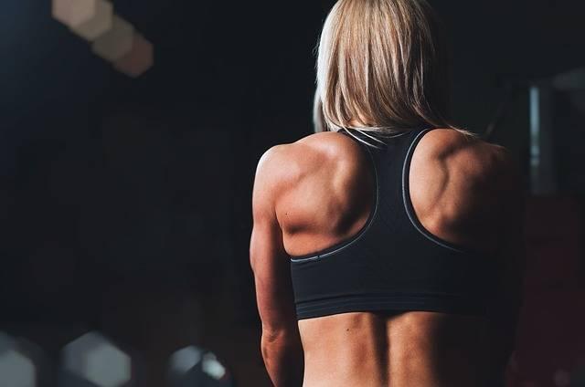 Training Rmuscles Back - Free photo on Pixabay (255438)