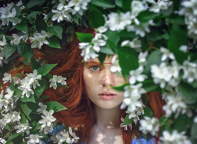 Girl Beauty Fairytales - Free photo on Pixabay (262293)