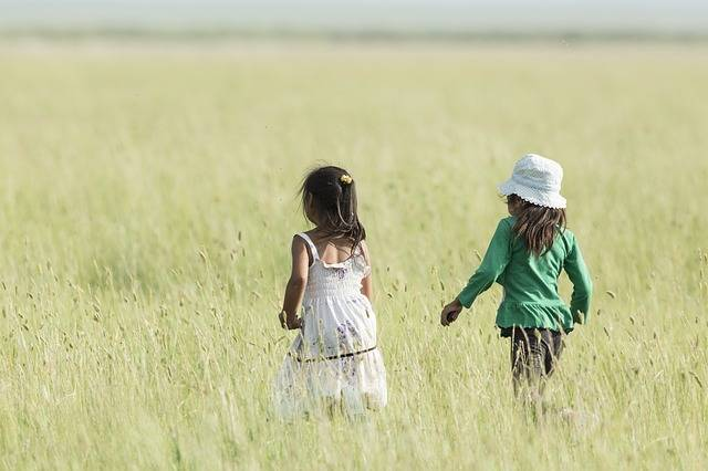 Two Girls Good Friends Meadow A - Free photo on Pixabay (262549)