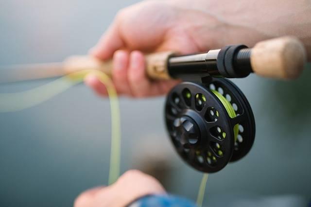 Fly Fishing Rod - Free photo on Pixabay (262569)
