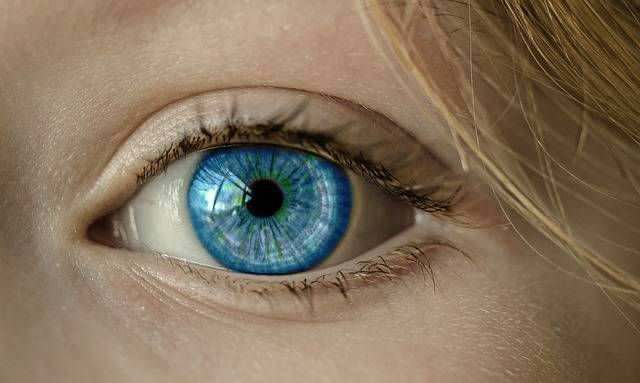 Eye Blue Iris - Free photo on Pixabay (296611)